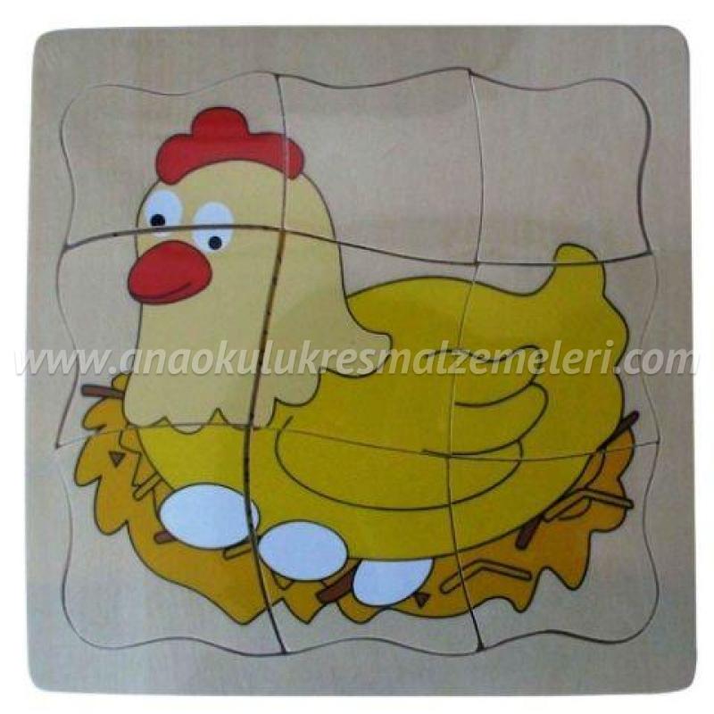 Tavuk Gelişim Evreleri Puzzle